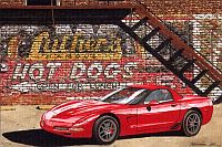 A Pair of Hot Dogs, C5 Corvette Z06, Item #DF25051